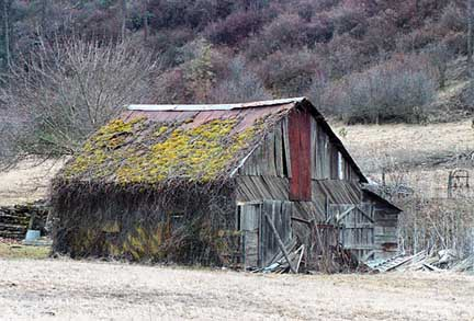 Old Barn At New Deal