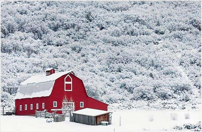 Snow On Barn
